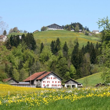 Eschau in Vorarlberg©                     By böhringer friedrich (Own work) [CC BY-SA 2.5 (http://creativecommons.org/licenses/by-sa/2.5)], via Wikimedia Commons